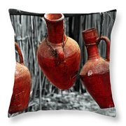 From Egypt Throw Pillow