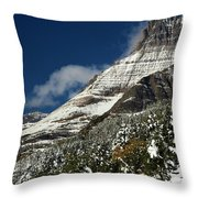 From Fall To Winter Throw Pillow