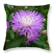 From Persia With Love Throw Pillow
