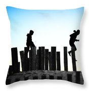 From Pole To Pole Throw Pillow