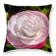 From Red To White Throw Pillow