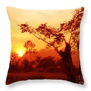 From Thailand With Love 03 Throw Pillow