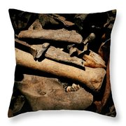 From The Bone Yard 1 Throw Pillow