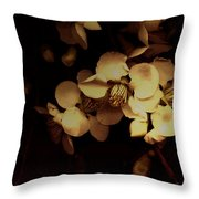 From The Darkness Into The Light Throw Pillow