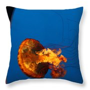 From The Deep - Jelly Fish Throw Pillow