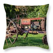 From The Farm Throw Pillow