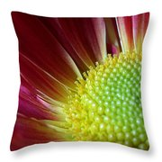 From The Florist Throw Pillow