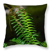 From The Forest Floor Throw Pillow