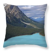 From The Lookout Throw Pillow