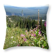 From The Mountain Throw Pillow