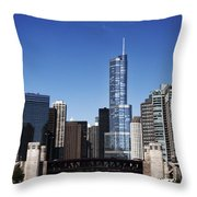 From The River Throw Pillow