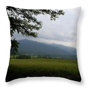 From The Shadows Throw Pillow