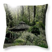 From Whence The Light Came Throw Pillow