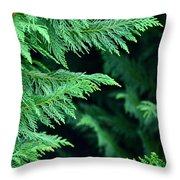 Fronds Of The Leyland Cypress Throw Pillow