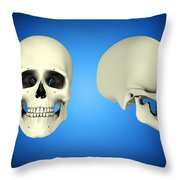 Front View And Side View Of Human Skull Throw Pillow by Stocktrek Images