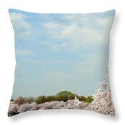 Frontier Airlines Throw Pillow