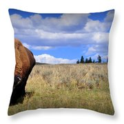 Frontview Of American Bison Throw Pillow