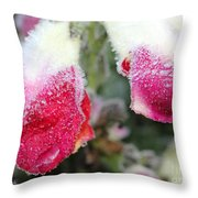 Frost Bears Down On Snapdragon Named Floral Showers Red And Yellow Bicolour Throw Pillow