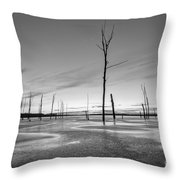 Frost Bite Bw Throw Pillow