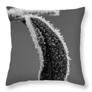 Frost Bw Throw Pillow