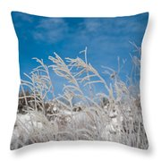 Frost Covered Grasses Against The Sky Throw Pillow