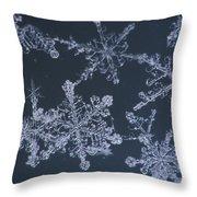 Frost Crystal On Glass Kodiak Isl Throw Pillow