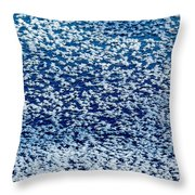 Frost Flakes On Ice - 02 Throw Pillow