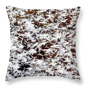 Frost Flakes On Ice - 03 Throw Pillow