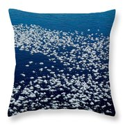Frost Flakes On Ice - 04 Throw Pillow