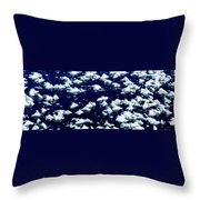 Frost Flakes On Ice - 05 Throw Pillow