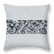 Frost Flakes On Ice - 06 Throw Pillow