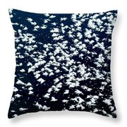 Frost Flakes On Ice - 09 Throw Pillow