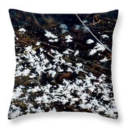 Frost Flakes On Ice - 10 Throw Pillow