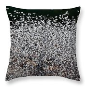 Frost Flakes On Ice - 12 Throw Pillow