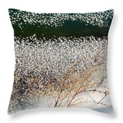 Frost Flakes On Ice - 13 Throw Pillow