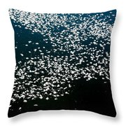 Frost Flakes On Ice - 15 Throw Pillow
