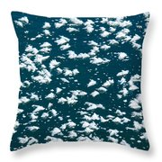 Frost Flakes On Ice - 19 Throw Pillow