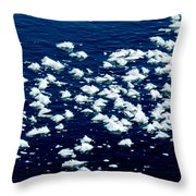 Frost Flakes On Ice - 21 Throw Pillow