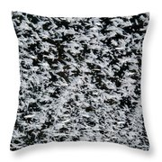 Frost Flakes On Ice - 24 Throw Pillow