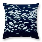 Frost Flakes On Ice - 25 Throw Pillow