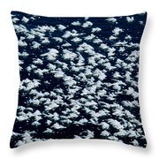 Frost Flakes On Ice - 27 Throw Pillow