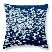 Frost Flakes On Ice - 28 Throw Pillow