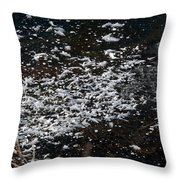 Frost Flakes On Ice - 30 Throw Pillow