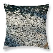 Frost Flakes On Ice - 31 Throw Pillow