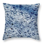 Frost Flakes On Ice - 32 Throw Pillow