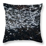 Frost Flakes On Ice - 33 Throw Pillow