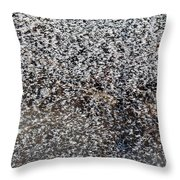 Frost Flakes On Ice - 14 Throw Pillow