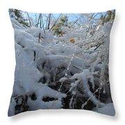 Frost Grass Throw Pillow
