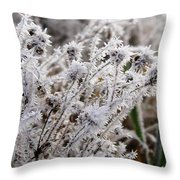 Frost In The Field Throw Pillow