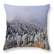 Frost On Cat's Feet Came Throw Pillow